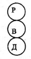 <b>Структурный</b> <b>анализ</b>