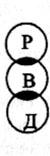 <b>Структурная</b> <b>патология</b>
